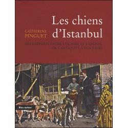 Les chiens d'Istanbul